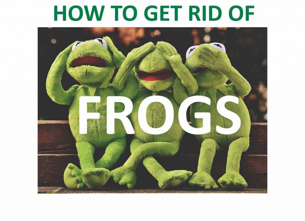 Frog DIY home remedies.