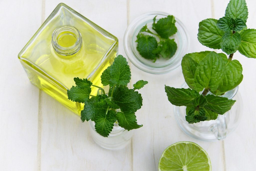 Peppermint oil and essential oils are natural stink bug repellents.